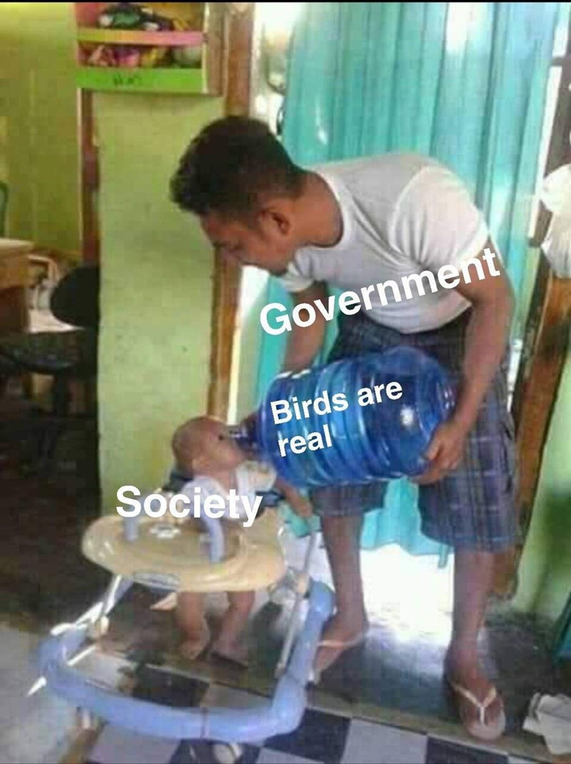 Machine - Government Birds are real Society