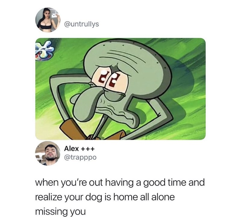 Cartoon - @untrullys Alex ++ @trapppo when you're out having a good time and realize your dog is home all alone missing you