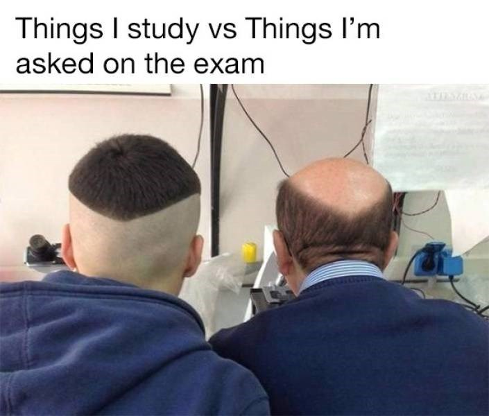 college meme - Job - Things I study vs Things I'm asked on the exam