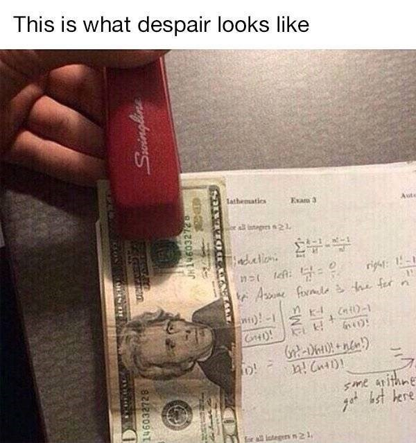 college meme - Text - This is what despair looks like lathematics Exam 3 Auto stgs21 dation h fer Ane forate Sme aithne t kre rl lategers n 2 1 CIN Spingline 146032728 8212E09r
