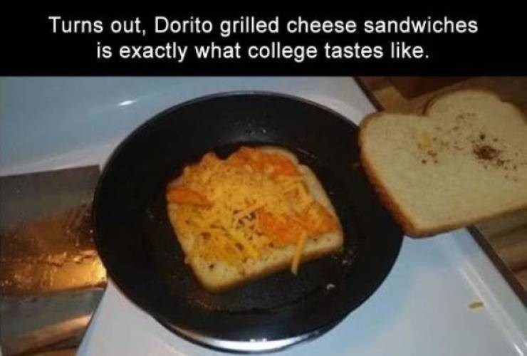 college meme - Dish - Turns out, Dorito grilled cheese sandwiches is exactly what college tastes like.