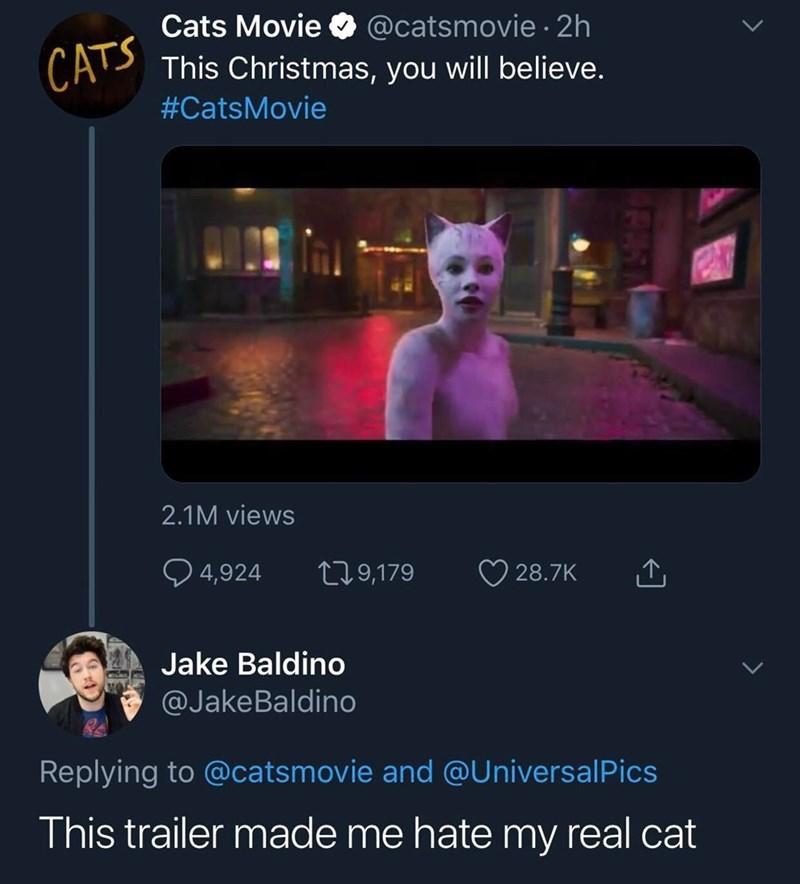 Text - Cats Movie @catsmovie2h CA This Christmas, you will believe. #CatsMovie 2.1M views 4,924 L29,179 28.7K Jake Baldino @JakeBaldino Replying to @catsmovie and @UniversalPics This trailer made me hate my real cat