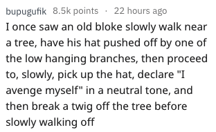 """Text - bupugufik 8.5k points 22 hours ago I once saw an old bloke slowly walk near a tree, have his hat pushed off by one of the low hanging branches, then proceed to, slowly, pick up the hat, declare """"I avenge myself"""" in a neutral tone, and then break a twig off the tree before slowly walking off"""