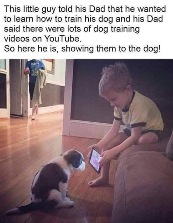Photo caption - This little guy told his Dad that he wanted to learn how to train his dog and his said there were lots of dog training videos on YouTube. So here he is, showing them to the dog!