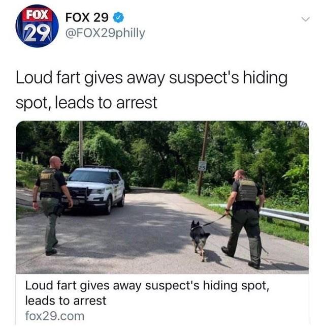Product - FOX FOX 29 29 @FOX29philly Loud fart gives away suspect's hiding spot, leads to arrest 25 Loud fart gives away suspect's hiding spot, leads to arrest fox29.com