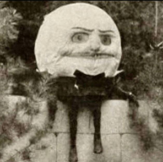 cursed image - Head