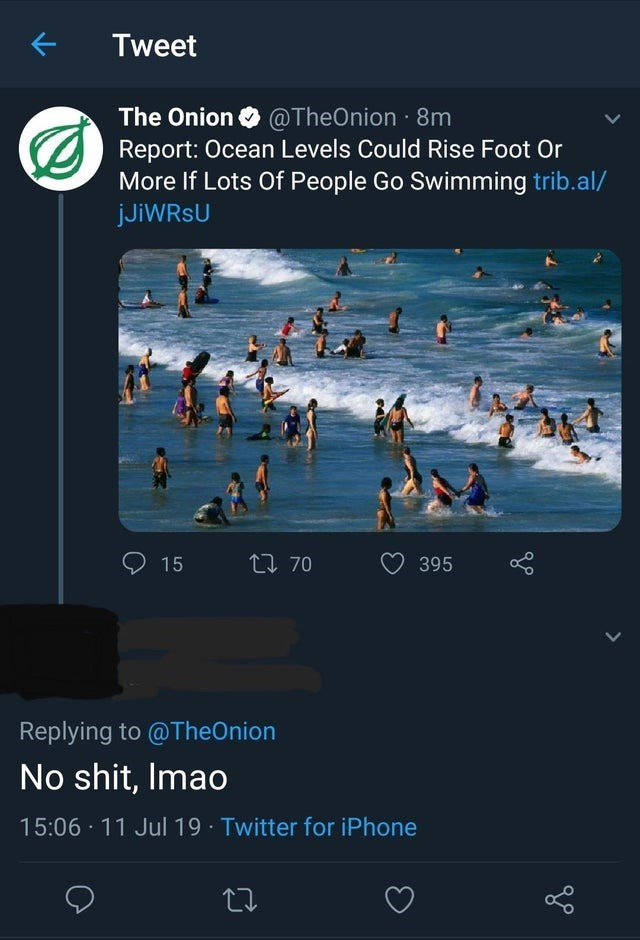 Text - Tweet The Onion @TheOnion 8m Report: Ocean Levels Could Rise Foot Or More If Lots Of People Go Swimming trib.al/ jJiWRsU ti 70 15 395 Replying to @TheOnion No shit, Imao 15:06 11 Jul 19 Twitter for iPhone