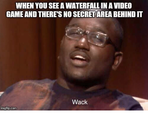 "Meme - ""WHEN YOU SEE A WATERFALL IN A VIDEO GAME AND THERE'S NO SECRET AREA BEHIND IT; Wack"""