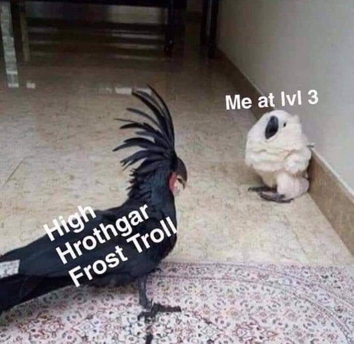 Bird - Me at Ivl 3 High Hrothgar Frost Troll