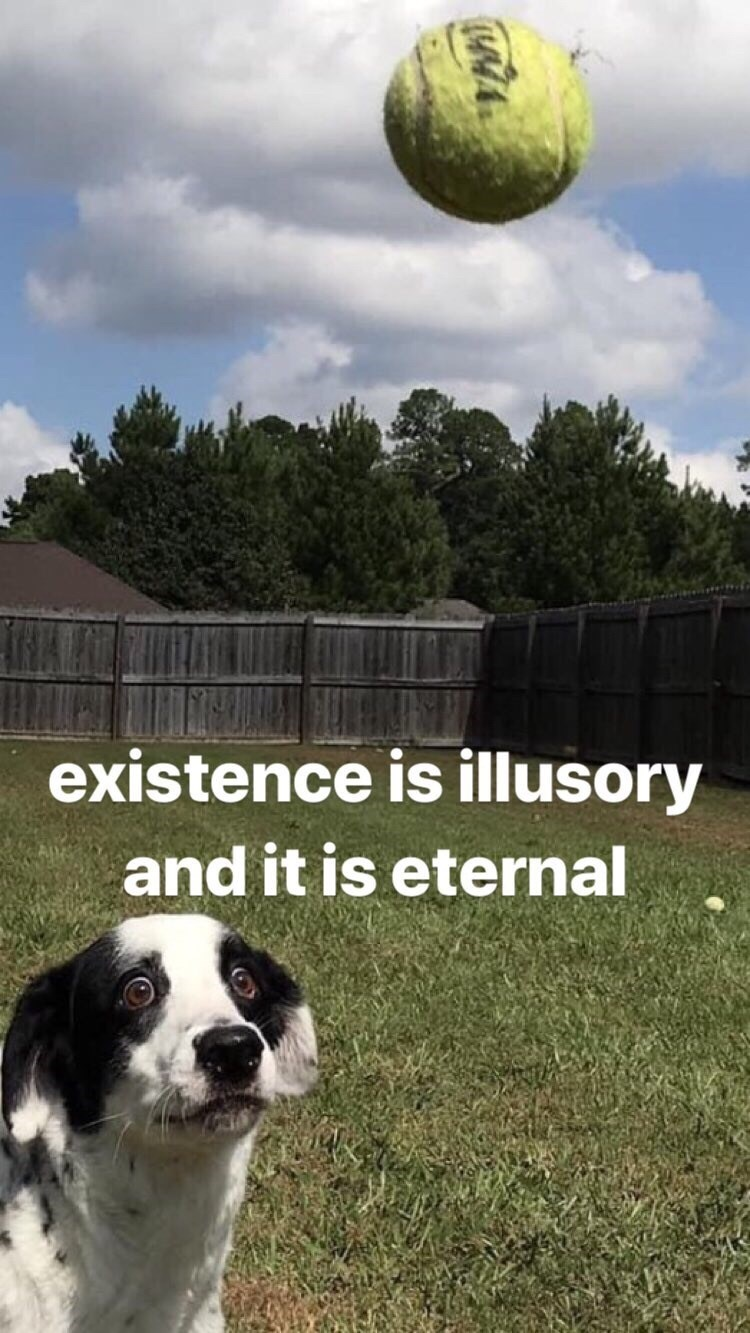 Dog - existence is illusory and it is eternal
