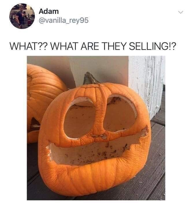 Pumpkin - Adam @vanilla_rey95 WHAT?? WHAT ARE THEY SELLING!?