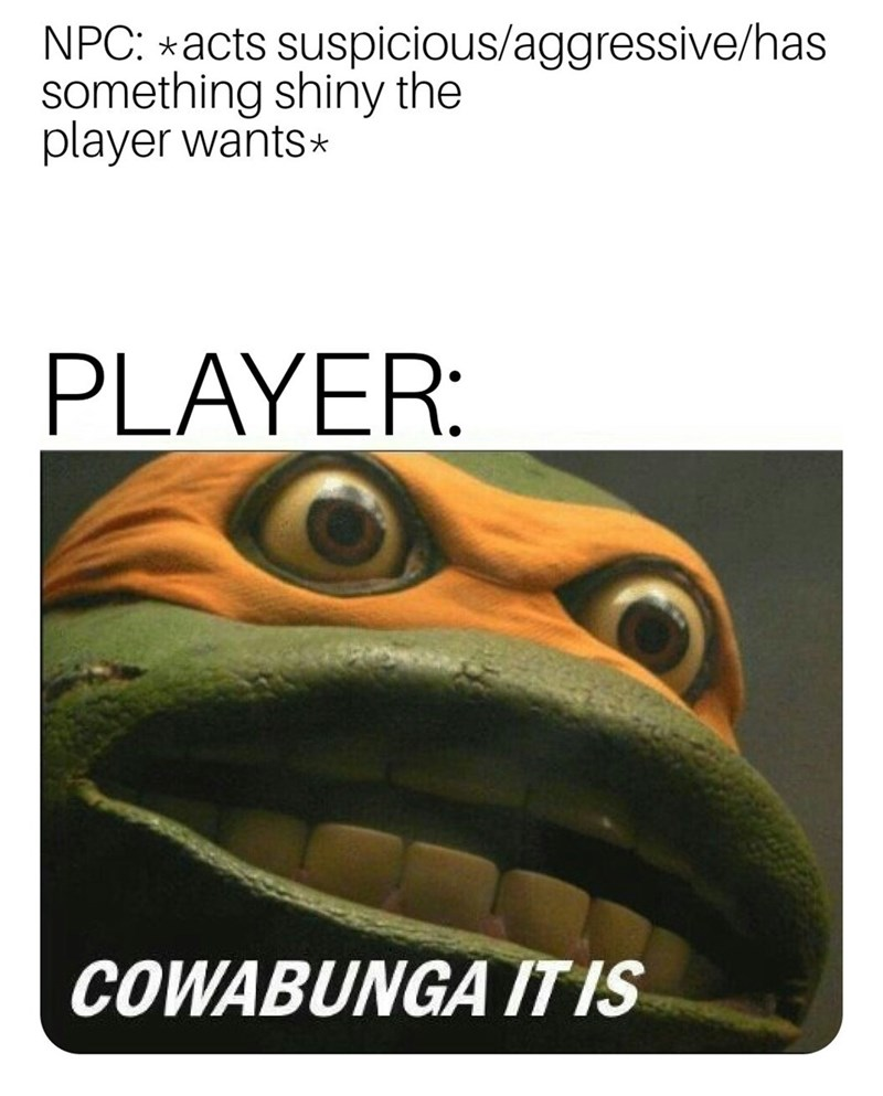 Adaptation - NPC: acts suspicious/aggressive/has something shiny the player wants PLAYER: COWABUNGA /TIS