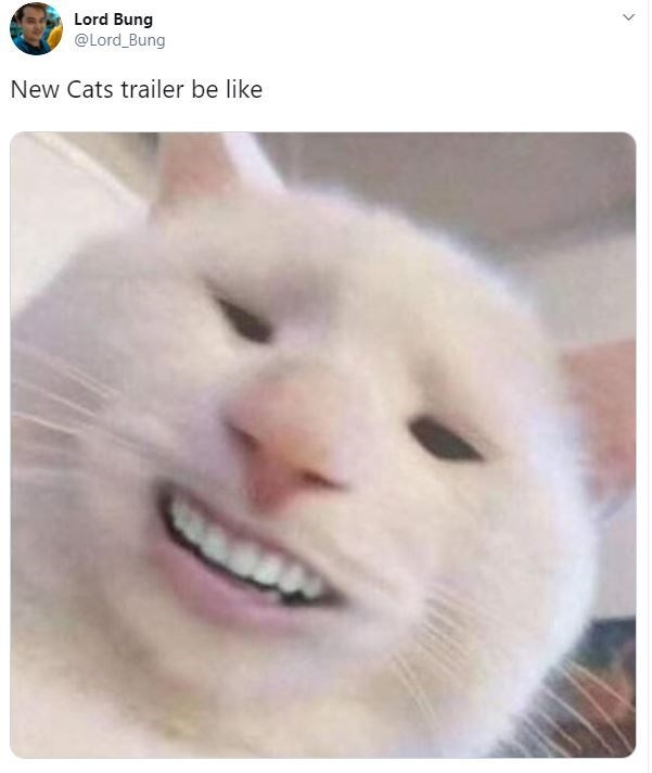 "Meme - ""New Cats trailer be like"""