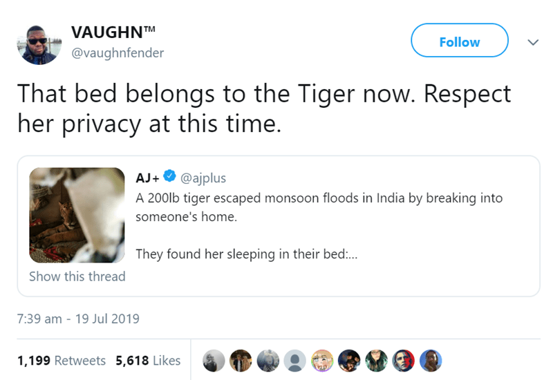 Text - VAUGHNTM Follow @vaughnfender That bed belongs to the Tiger now. Respect her privacy at this time. @ajplus AJ+ A 200lb tiger escaped monsoon floods in India by breaking into someone's home. They found her sleeping in their bed:.. Show this thread 7:39 am - 19 Jul 2019 1,199 Retweets 5,618 Likes