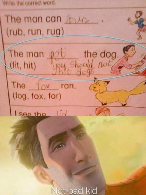 Text - Write the correct word The man can b (rub, run, rug) The man pat the dog. (fit, hit) Shodd not The fox ran. (fog, fox, for) lid I see the Not bad kid