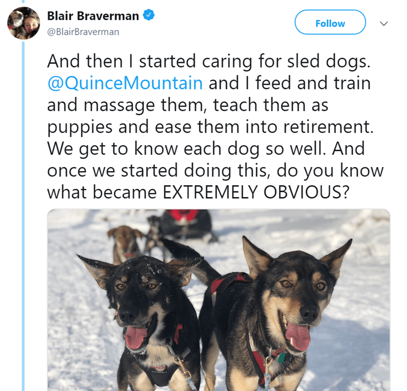 Dog - Blair Braverman Follow @BlairBraverman And then I started caring for sled dogs. @QuinceMountain and I feed and train and massage them, teach them as puppies and ease them into retirement. We get to know each dog so well. And once we started doing this, do you know what became EXTREMELY OBVIOUS?