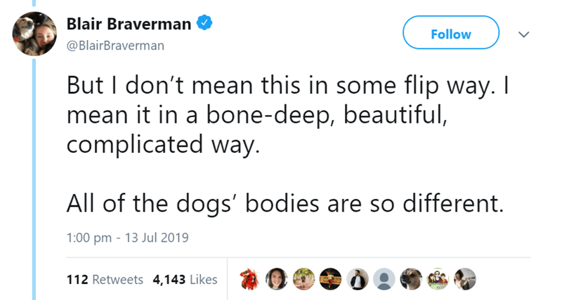 Text - Blair Braverman Follow @BlairBraverman But I don't mean this in some flip way. I mean it in a bone-deep, beautiful, complicated way. All of the dogs' bodies are so different. 1:00 pm 13 Jul 2019 112 Retweets 4,143 Likes