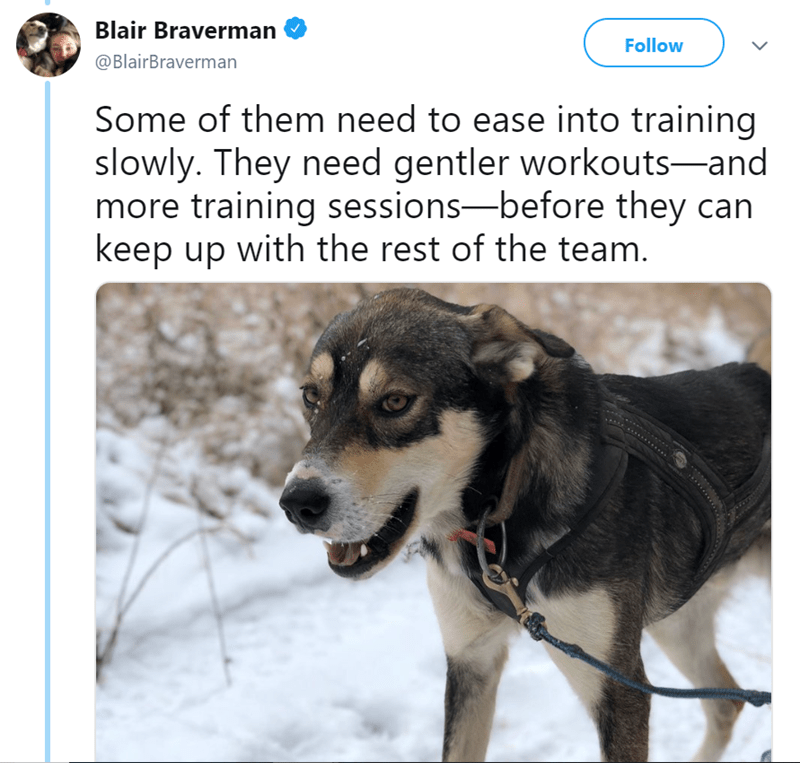 Vertebrate - Blair Braverman Follow @BlairBraverman Some of them need to ease into training slowly. They need gentler workouts-and more training sessions-before they can keep up with the rest of the team.