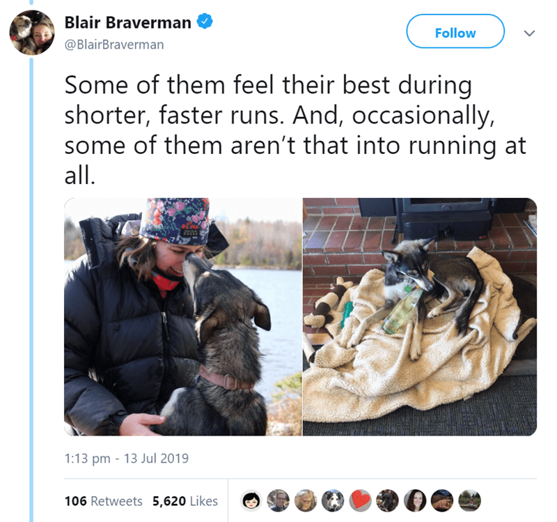 Canidae - Blair Braverman Follow @BlairBraverman Some of them feel their best during shorter, faster runs. And, occasionally, some of them aren't that into running at all. 1:13 pm 13 Jul 2019 106 Retweets 5,620 Likes