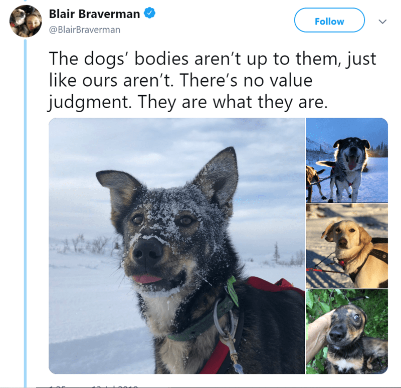 Dog - Blair Braverman Follow @BlairBraverman The dogs' bodies aren't up to them, just like ours aren't. There's no value judgment. They are what they are