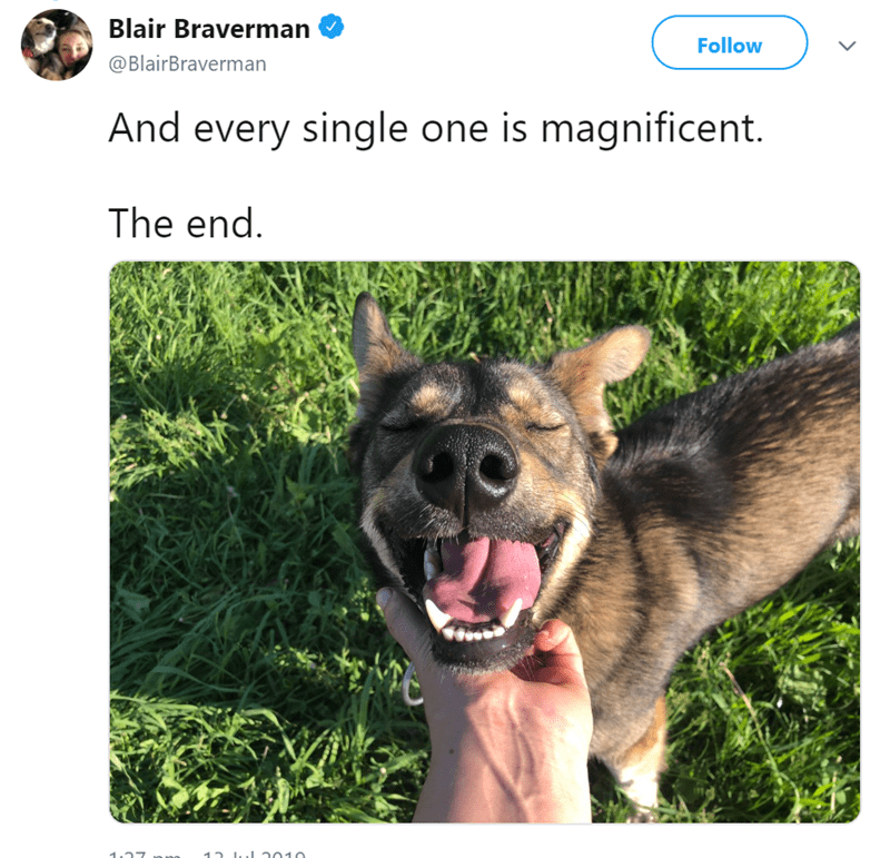Dog breed - Blair Braverman Follow @BlairBraverman And every single one is magnificent. The end. 15 .J 2010