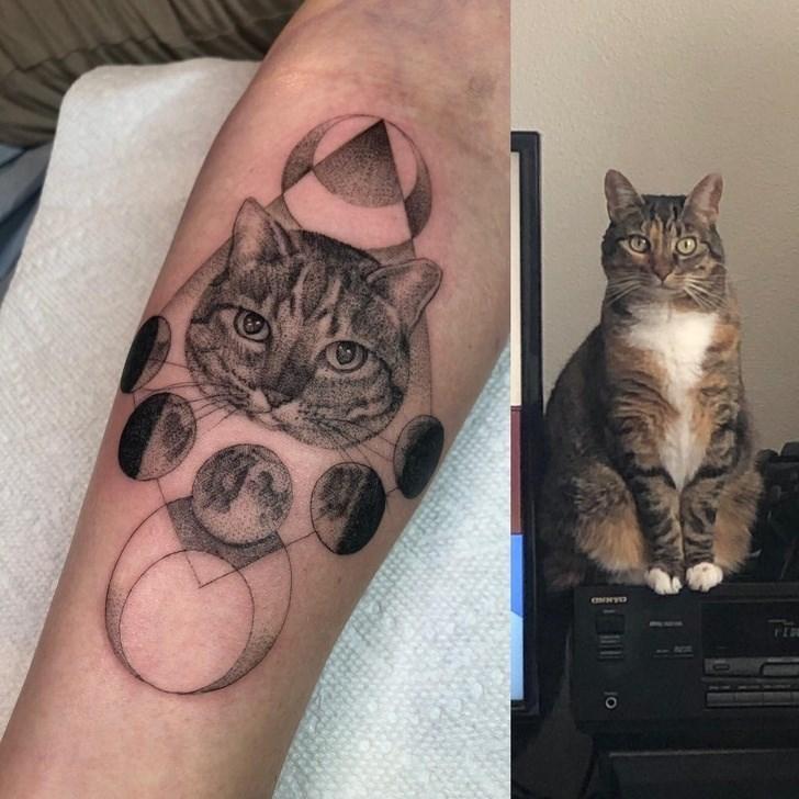 cat tattoo - Tattoo