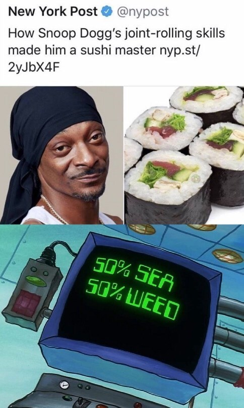 Technology - New York Post@nypost How Snoop Dogg's joint-rolling skills made him a sushi master nyp.st/ 2yJbX4F S0% SEA S0% LUEED