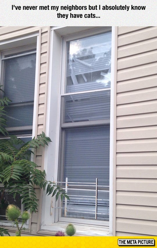 picture of window with ruined shutter blinds