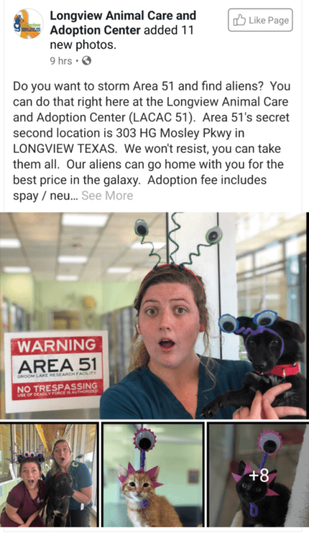 animal meme - Photography - Longview Animal Care and Adoption Center added 11 new photos. 9 hrs Like Page Do you want to storm Area 51 and find aliens? You can do that right here at the Longview Animal Care and Adoption Center (LACAC 51). Area 51's secret second location is 303 HG Mosley Pkwy in LONGVIEW TEXAS. We won't resist, you can take them all. Our aliens can go home with you for the best price in the galaxy. Adoption fee includes spay neu... See More WARNING AREA 51 GROOM LAKE RESEARCH FA