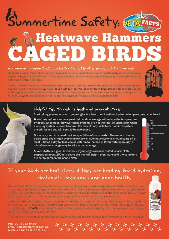 Advertising - Summertime Safety: VETA FACTS Heatwave Hammers BIRDS CAGED A common problem that can be treated without spending a lot of money. it sess and Dehydration are both very real killers in Australian aviaries, particularly when the mercuny egns o edge the mid 30 mars What many Reepers don't know (or choose to igeore is high temperatutes t maswe strat on bircs Mastly we fave the ability to change our envitonment to suit our needs, this gives us a huge advantage aves gar teathered friends