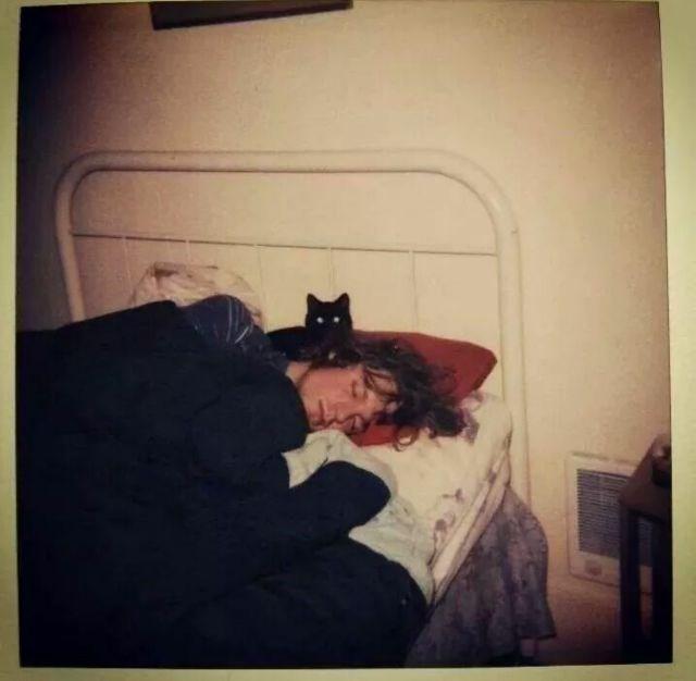kurt cobain - Cat