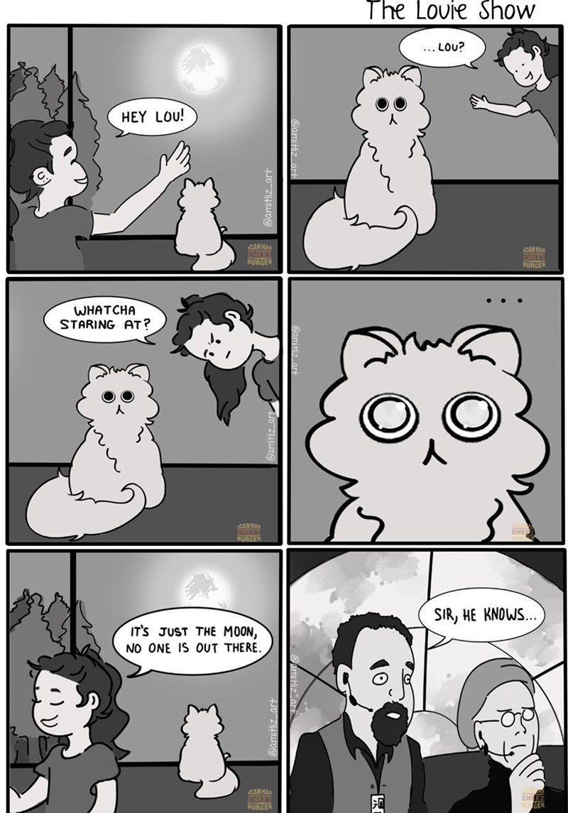 comic about a cat looking at the moon