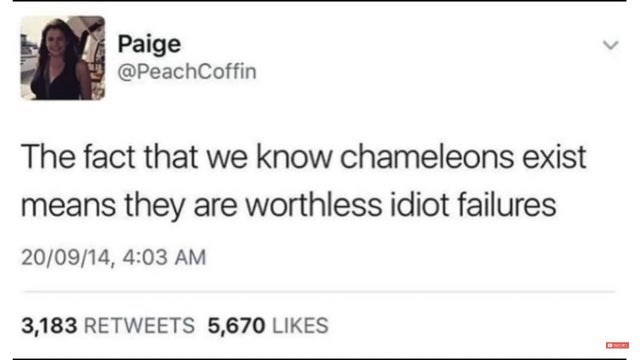 Text - Paige @PeachCoffin The fact that we know chameleons exist means they are worthless idiot failures 20/09/14, 4:03 AM 3,183 RETWEETS 5,670 LIKES
