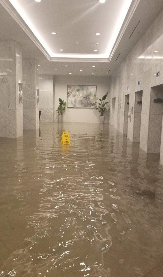 Floor - Ha