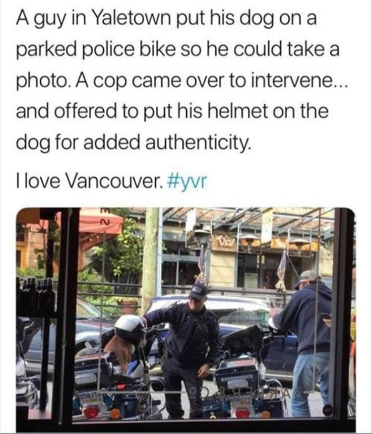 "Meme - ""A guy in Yaletown put his dog on a parked police bike so he could take a photo.A cop came over to intervene... and offered to put his helmet on the dog for added authenticity. I love Vancouver."""