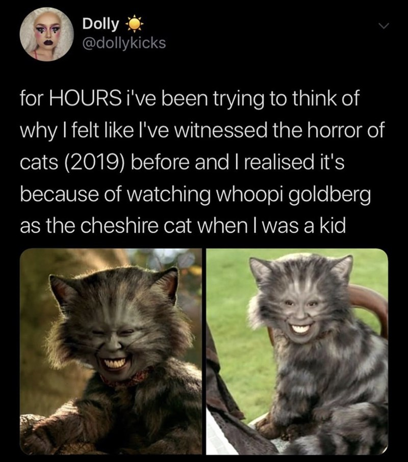 Photo caption - Dolly @dollykicks for HOURS i've been trying to think of why I felt like I've witnessed the horror of cats (2019) before and I realised it's because of watching whoopi goldberg as the cheshire cat when I was a kid