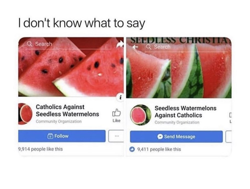Watermelon - Idon't know what to say SEEDLESS CHRISTIA aSearch a Search Catholics Against Seedless Watermelons Seedless Watermelons Against Catholics Like Community Organization L Community Organization Follow Send Message 9,411 people like this 9,914 people like this