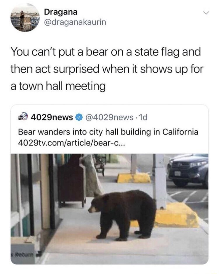 Funny meme about a bear wandering into a town hall meeting in California