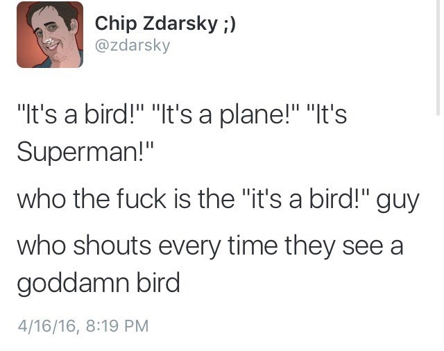 """Text - Chip Zdarsky ;) @zdarsky """"It's a bird!"""" """"It's a plane!"""" """"It's Superman!"""" who the fuck is the """"it's a bird!"""" guy who shouts every time they see a goddamn bird 4/16/16, 8:19 PM"""