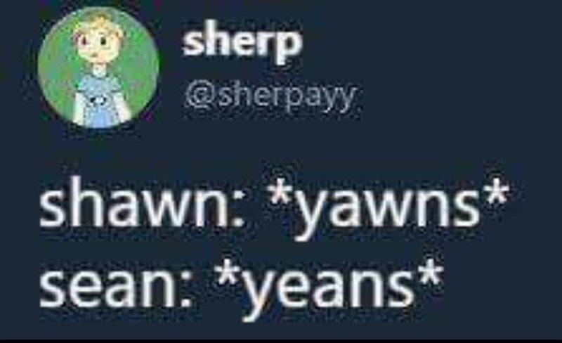 Text - sherp @sherpayy shawn: *yawns* sean: *yeans*