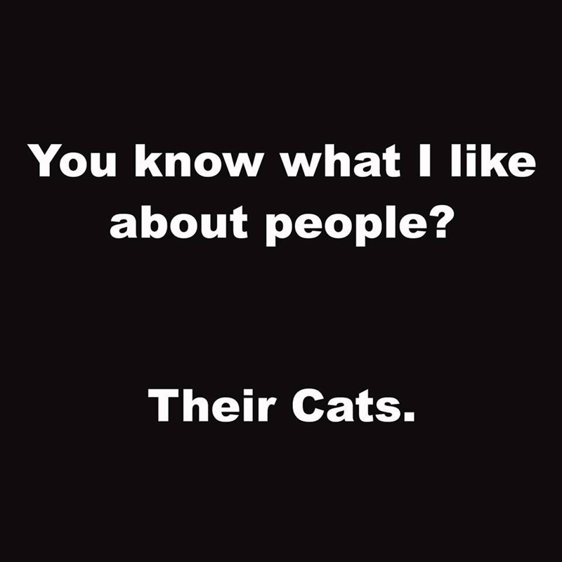 Text - You know what I like about people? Their Cats.