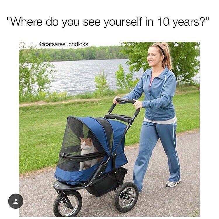 """Baby carriage - """"Where do you see yourself in 10 years?"""" @catsaresuchdicks"""