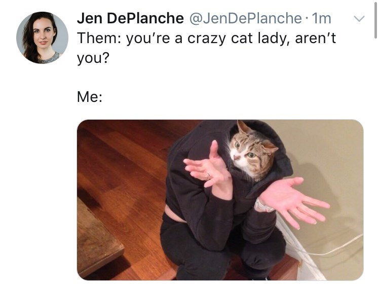 Text - Jen DePlanche @JenDePlanche 1m Them: you're a crazy cat lady, aren't you? Me: