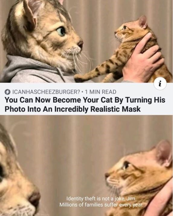 Mammal - i ICANHASCHEEZBURGER? 1 MIN READ You Can Now Become Your Cat By Turning His Photo Into An Incredibly Realistic Mask Identity theft is not a joke, Jim Millions of families suffer every year