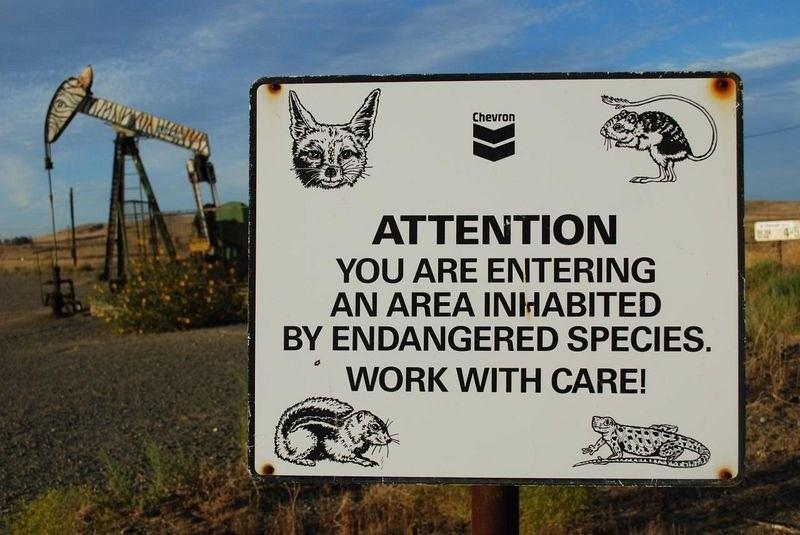 Iron zoo in California
