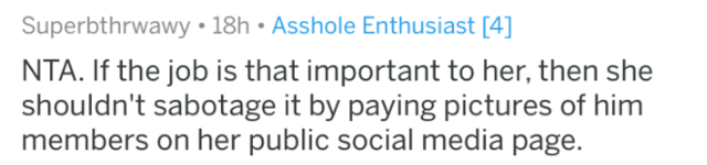 reddit - Text - Superbthrwawy 18h Asshole Enthusiast [4] NTA. If the job is that important to her, then she shouldn't sabotage it by paying pictures of him members on her public social media page.