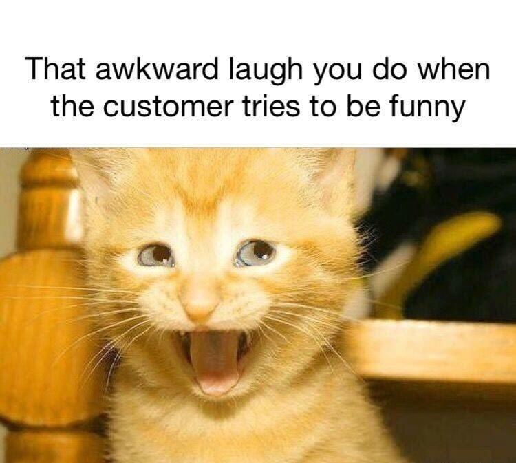 retail memes - Cat - That awkward laugh you do when the customer tries to be funny