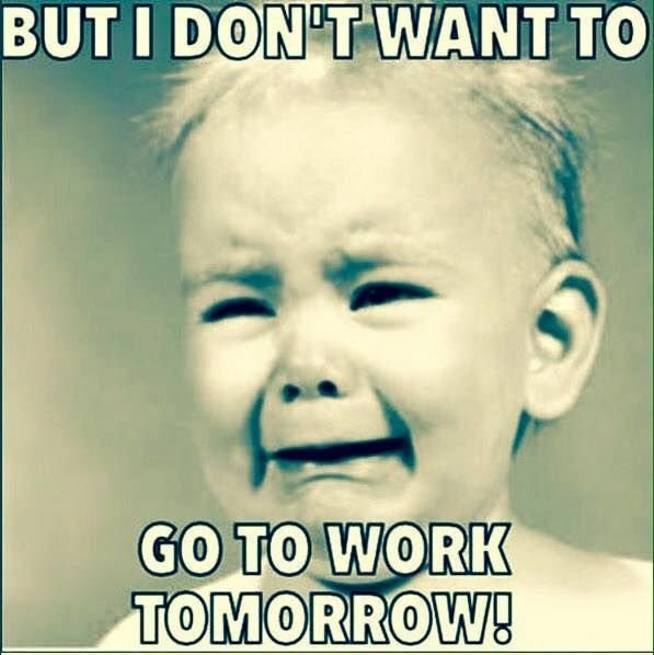 retail memes - Text - BUT I DON'T WANT TO GO TO WORK TOMORROW!