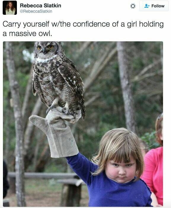 "Meme - ""Carry yourself w/the confidence of a girl holding a massive owl"""