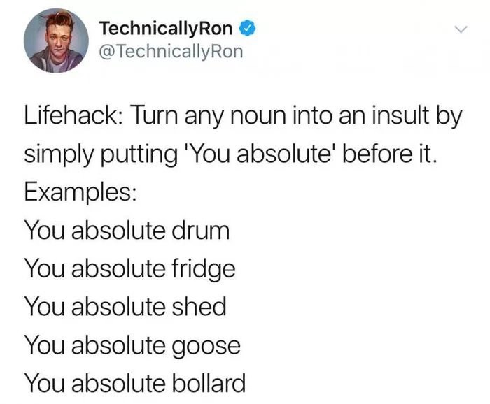 "Tweet - ""Lifehack: Turn any noun into an insult by simply putting ""You absolute' before it. Examples: You absolute drum You absolute fridge You absolute shed You absolute goose You absolute bollard"""